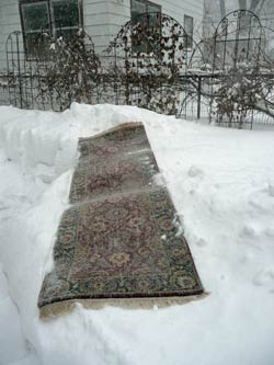 One of Deb's rugs luxuriates in a snow bath.